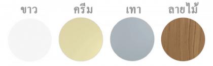 ประตู PVC Polywood รุ่น Thaidoor มี 4 สี (ขาว, ครีม, เทา, ลายไม้)